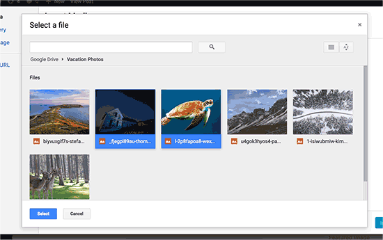 Select files you want to import from Google Drive