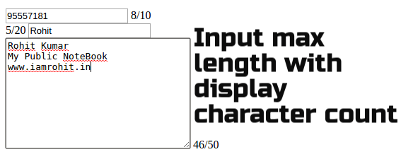 Set Input max length with display character count jQuery