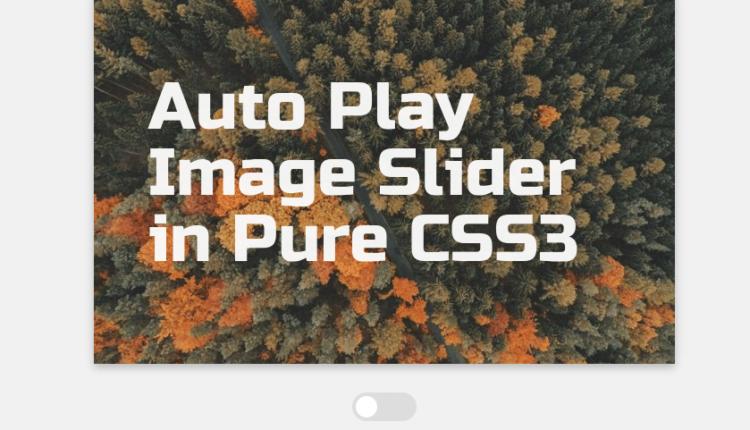 Simple Auto Play Image Slider