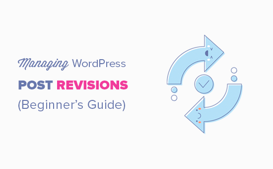 Managing the WordPress post revisions